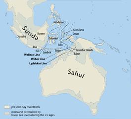 265px-Map_of_Sunda_and_Sahul